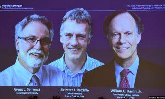 Nobelova nagrada za medicinu dodijeljena za otkriće u borbi protiv raka