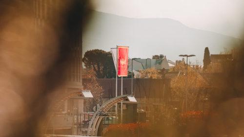 Dan državnosti kroz fotografije Stefana Jovanovića